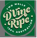 D'Vine ripe for Como Glasshouse